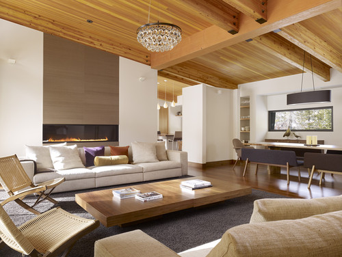 modern contemporary living room 8