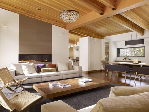 modern contemporary living room 8