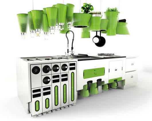 Eco Organic Kitchen Designs