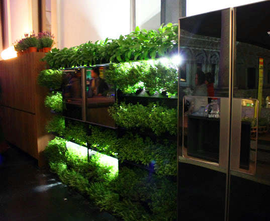 Eco Organic Kitchen Designs 1