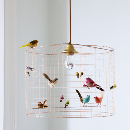 Birds in Home Decoration 9