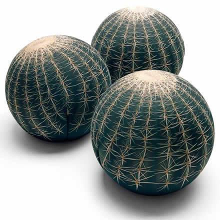 Cactus Seat by Maurizio Galante