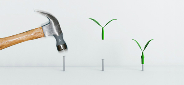 Leaf Wall Hooks by Jeong Hwa Jin