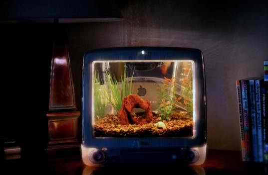 old mac tv aquarium