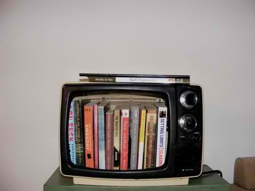 recycled old tv into a book shelf