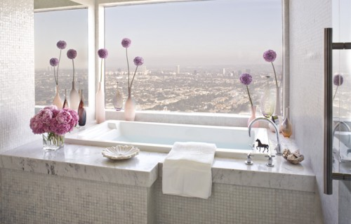 awesome breathtaking bathroom with a view