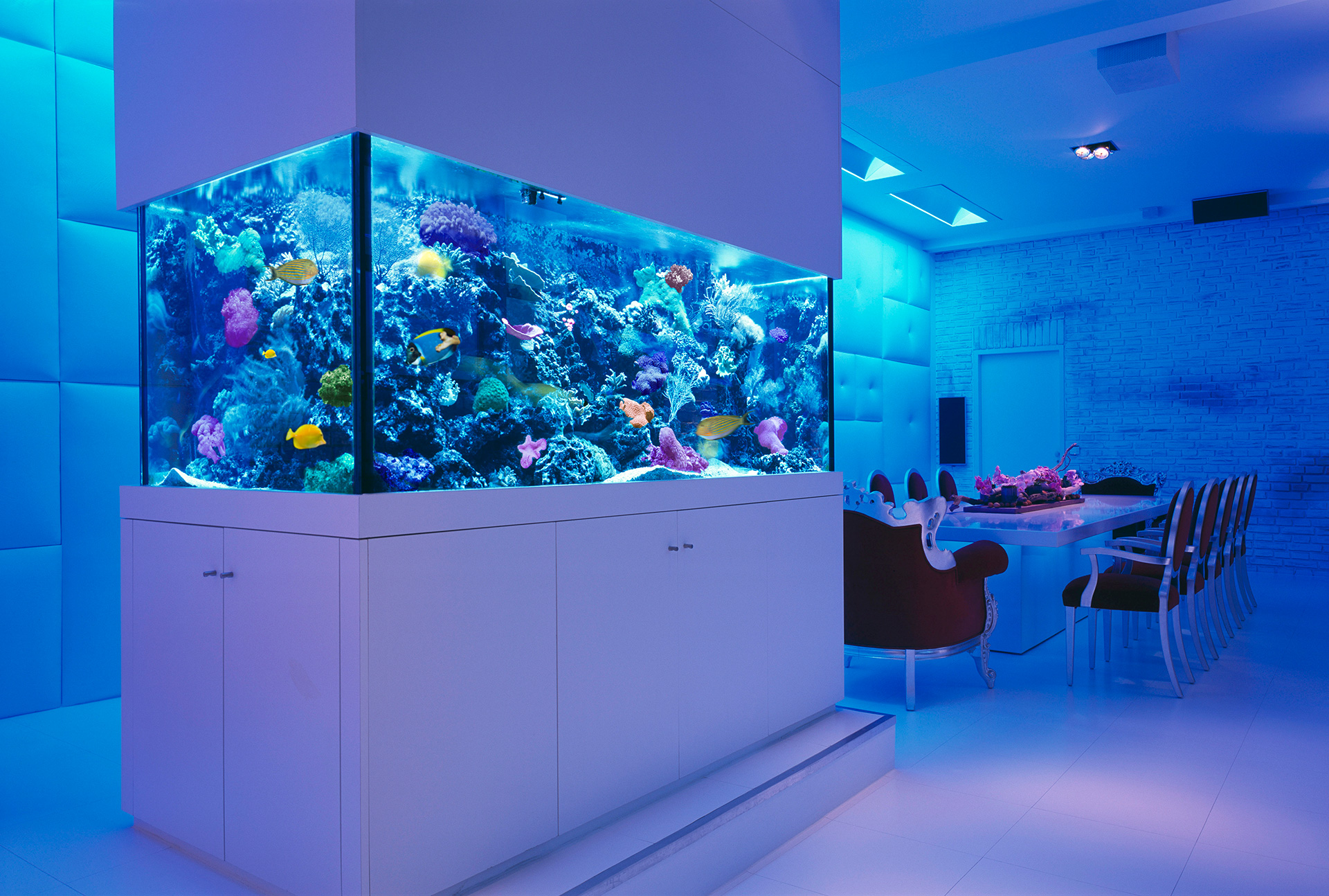 25 rooms with stunning aquariums decoholic for Fish hotel tank