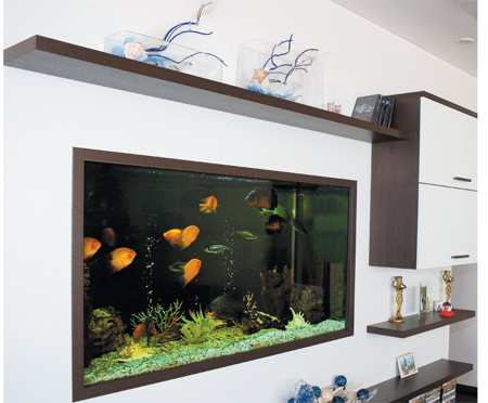 room 7 decorating ideas with aquarium
