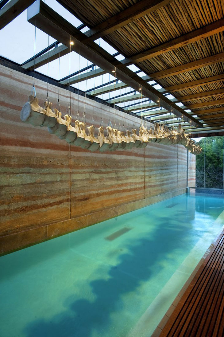 indoor pool by Silvio Rech and Lesley Carstens Architects