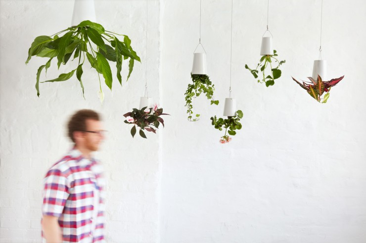 sky planter 11