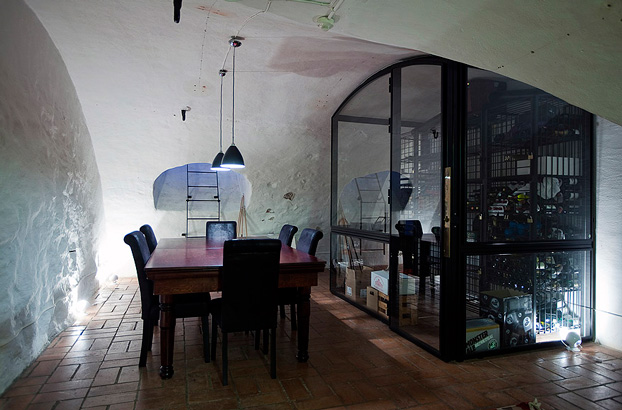 attic penthouse with beams 14