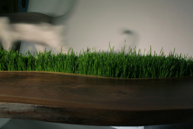 Eco Planter Table by Emily Wettstein 2
