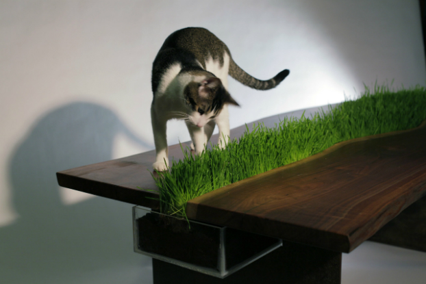 Eco Planter Table by Emily Wettstein 4