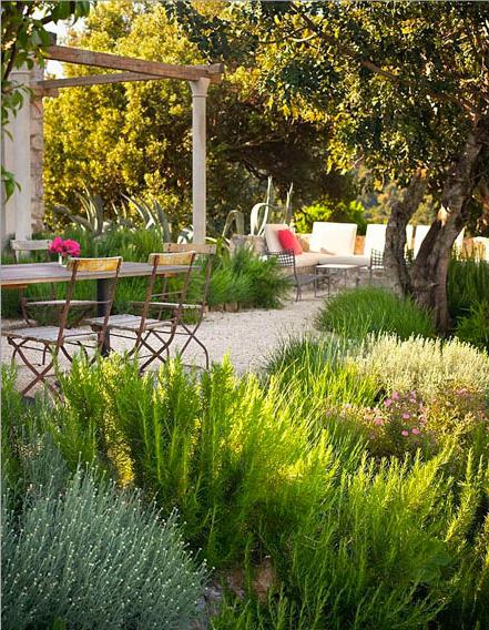 garden Design13