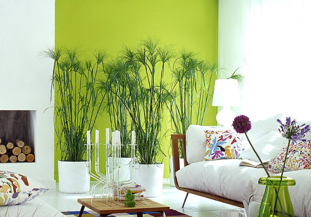 bold-lime-green-color-living-room-decorating-idea