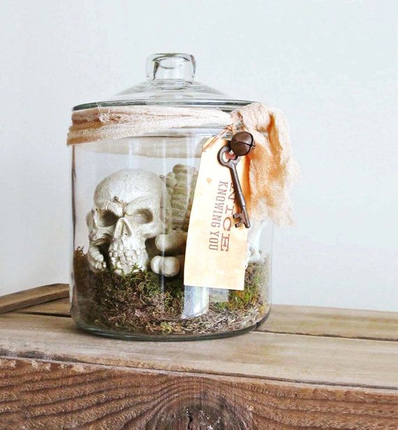 Bones – Skeleton In Apothecary Jar