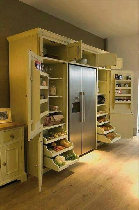 Pantry surrounding fridge