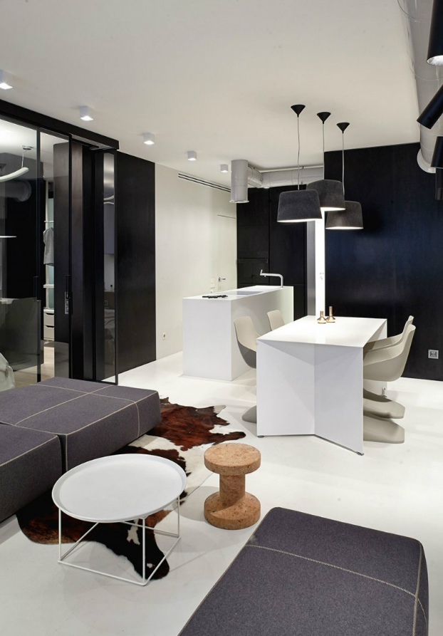 Functional Black And White Apartment 3