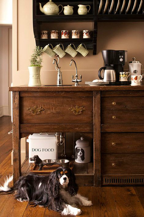 home coffee bar with dog