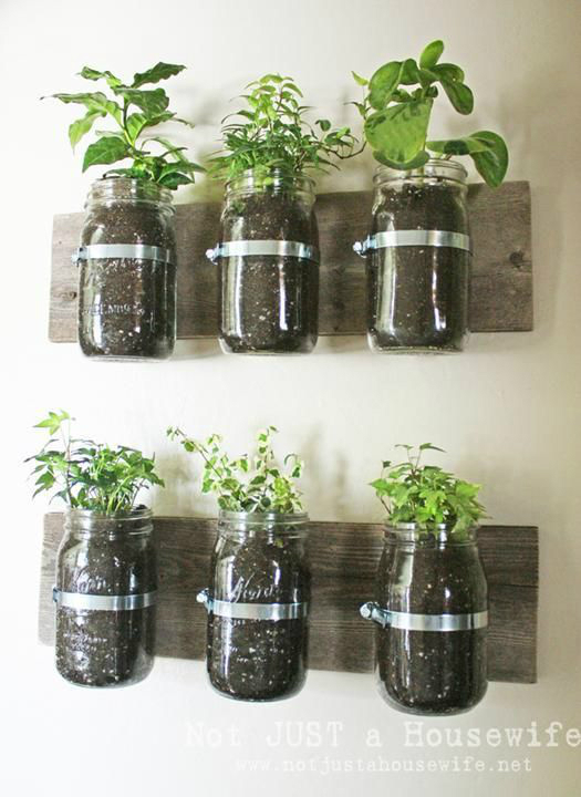 kitchen decorating ideas with herbs 23