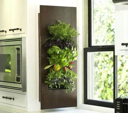 kitchen decorating ideas with herbs 24