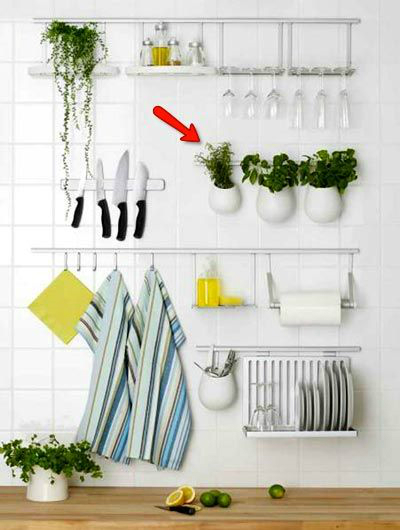 kitchen decorating ideas with herbs 29