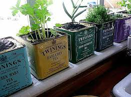 kitchen decorating ideas with herbs 5