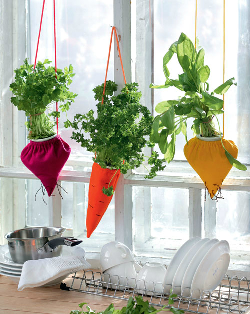 kitchen decorating ideas with herbs