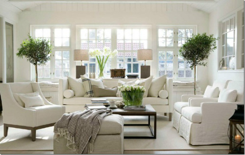 White Living Room Ideas 14