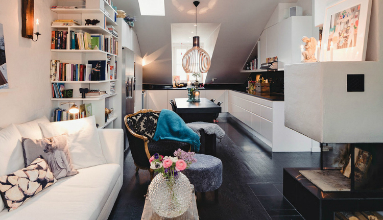 Modest Elegant Scandinavian Loft interior