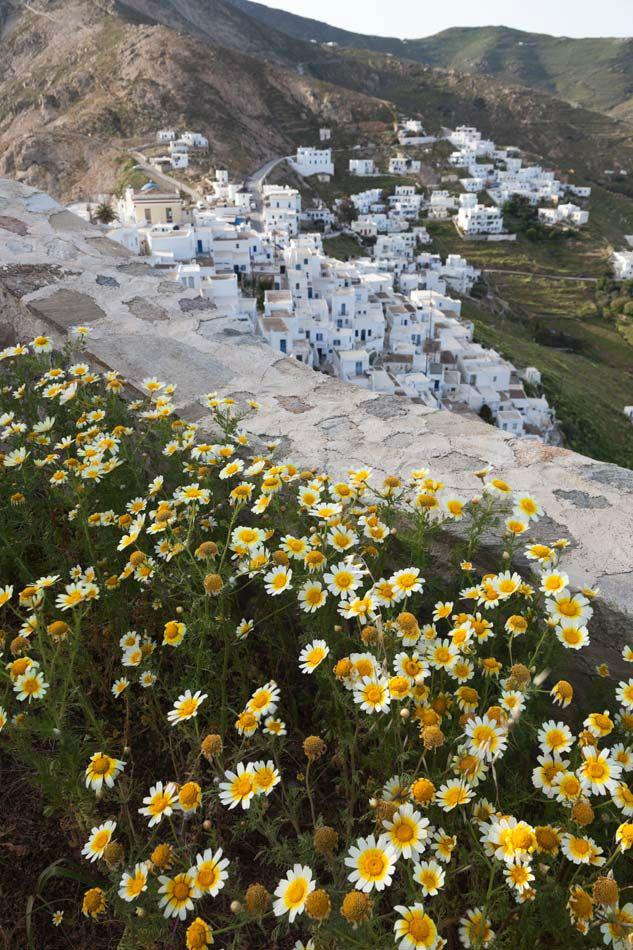 coco mat hotel serifos island Greece 18