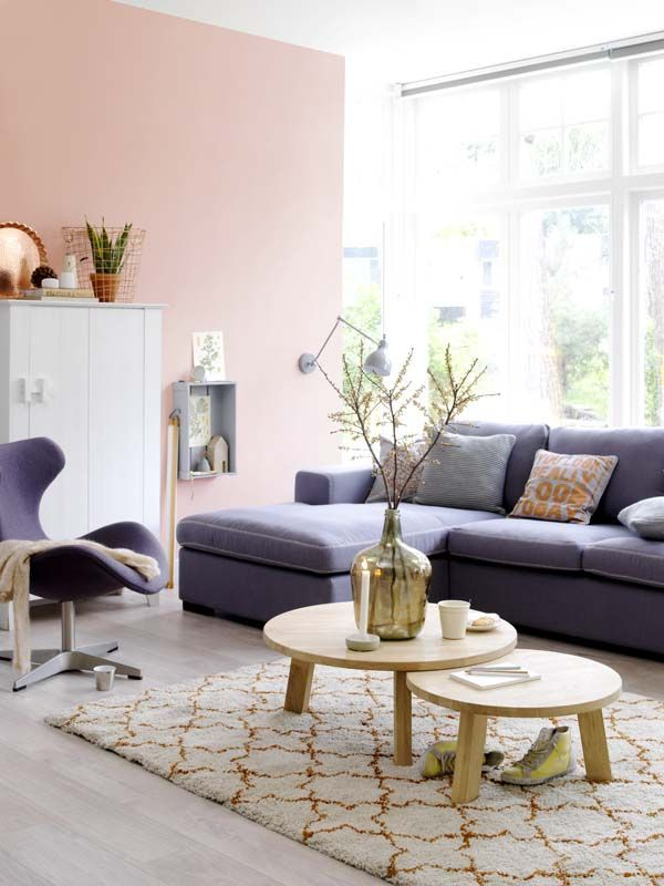 Fresh Living Room With Dark Sofa And Pink Blush Wall