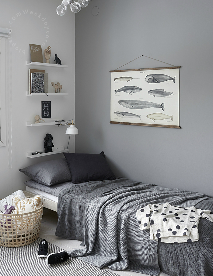 Gray Boys' Room Idea with Fishes