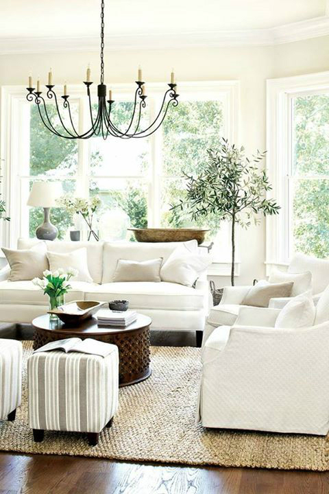 transitional white bright lightful living room