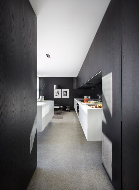 The Transformation Of The Rear of a Victorian Terrace House in Sydney 4