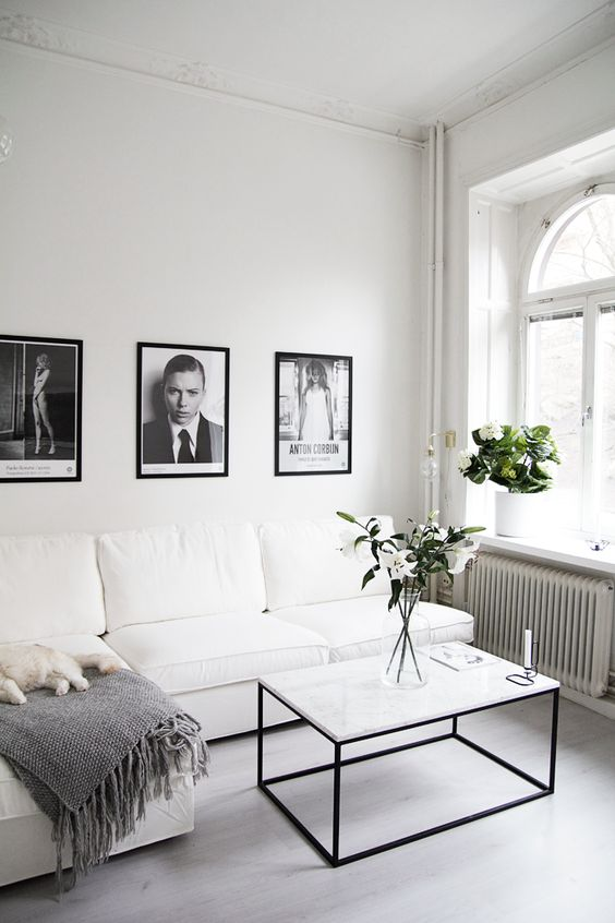 Black and White Living Room Idea 46
