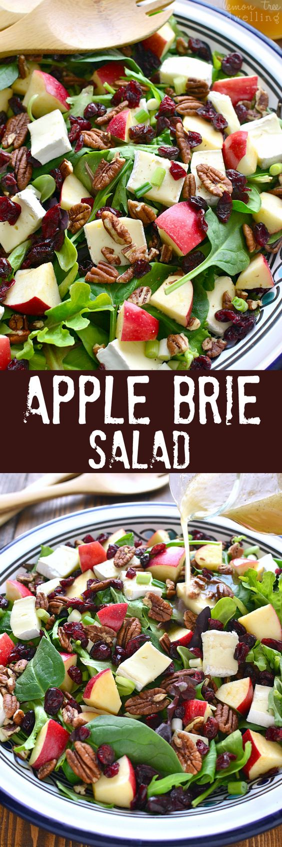 Most Pinned Salad Recipe on Pinterest 16