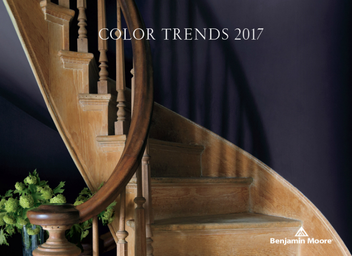 Paint Color Of 2017: Shadow 2117-30 2