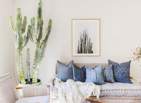 cactus interior design trend idea