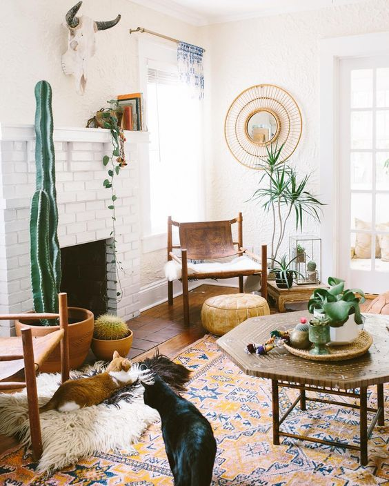 6 Interior Lighting Designs Use To Create An Ambience: 10 Ways To Work The Cactus Trend