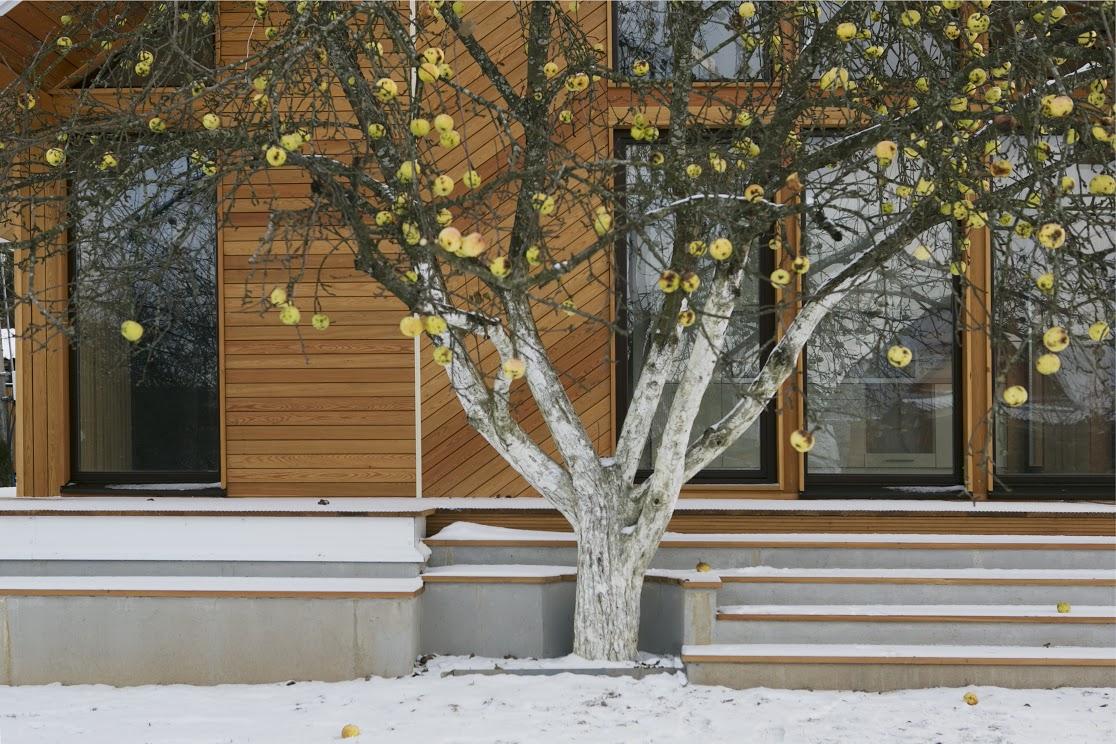 Small Modular Scandinavian Style Home 9