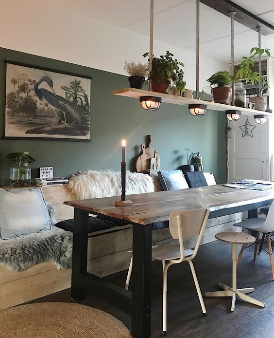 dining room plants decoration idea