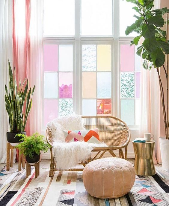 colourful decor with house plants