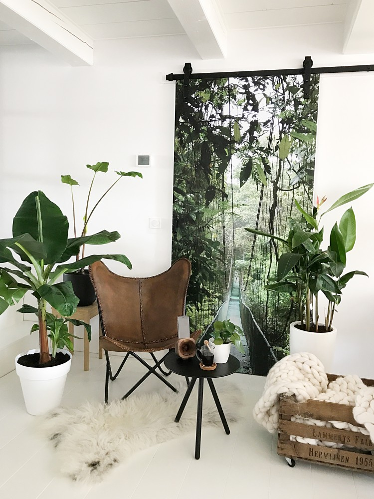 indoor plants decor idea 18