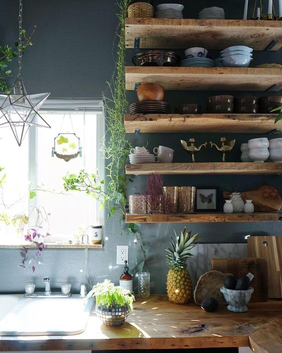 indoor plants decor idea 21