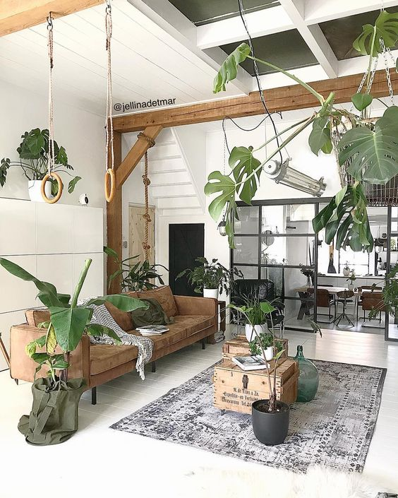 indoor plants decor idea 6