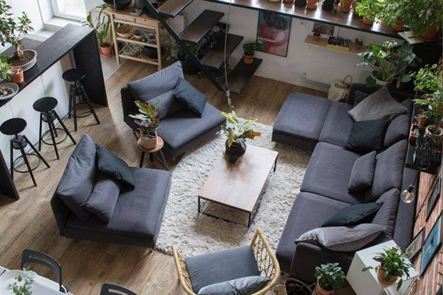 indoor plants decor idea