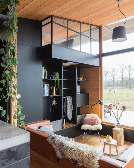 loft with indoor ivy