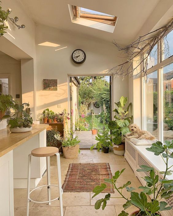 indoor plants home decorating idea