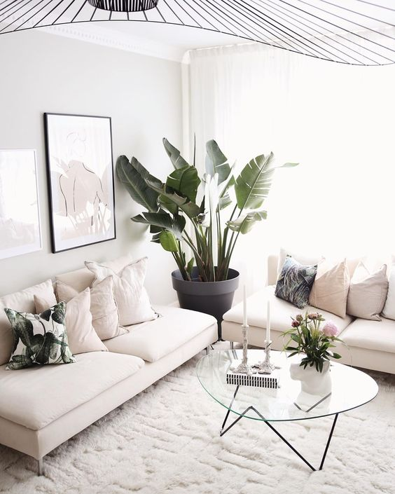 palms print living room pillow
